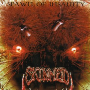Skinned - Spawn of Insanity cover art