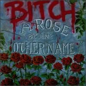 Bitch - A Rose By Any Other Name cover art