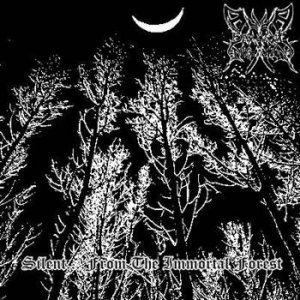 Darlament Norvadian - Silent.... From the Immortal Forest cover art