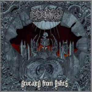 Morbidity - Revealed from Ashes cover art