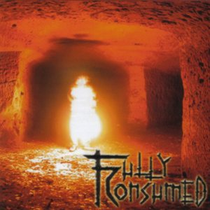 Fully Consumed - Fully Consumed cover art