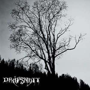 Drapsnatt - Skelepht cover art