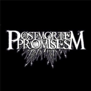 Postmortem Promise - We Play Weddings cover art