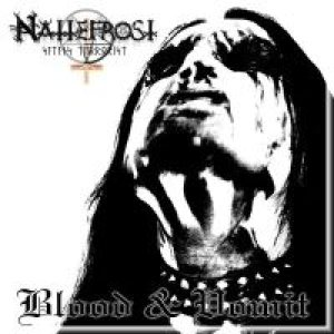 Nattefrost - Blood & Vomit cover art
