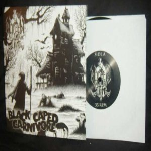 Wooden Stake - Black Caped Carnivore cover art