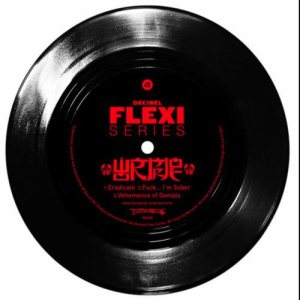 Wormrot - Decibel Flexi Series cover art