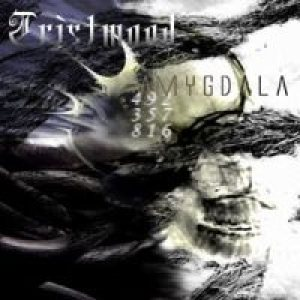 Tristwood - Amygdala cover art