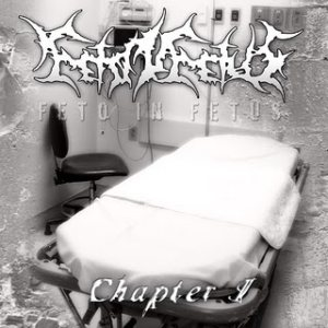 Feto In Fetus - Chapter I cover art
