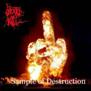 Created To Kill - Sample of Destruction cover art