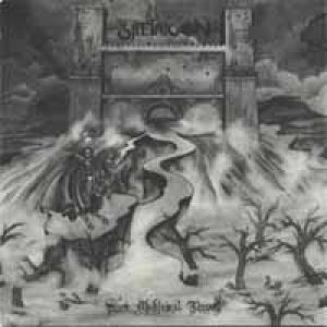 Satyricon - Dark Medieval Times cover art