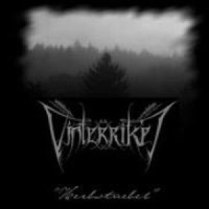 Vinterriket - Herbstnebel cover art