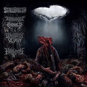 Stillbirth / Congenital Anomalies / Disfigurement of Flesh / Nephrectomy - Pathology of Anomalous Origin cover art
