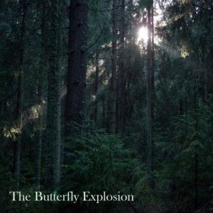 Butterfly Explosion - Vision cover art