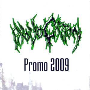 Provocation - Promo 2009 cover art