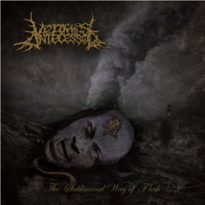Vermis Antecessor - The Subliminal Way of Flesh cover art