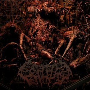 Splattered Entrails - 2012 EP