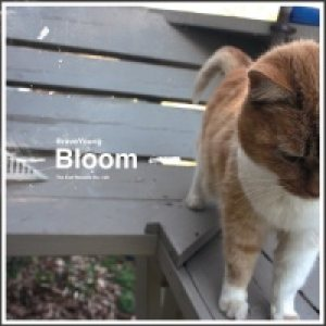 Braveyoung - Bloom cover art