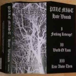 Pale Mist - Hate Wound cover art