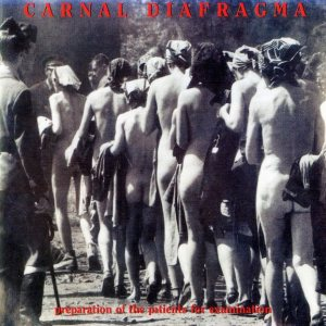 Carnal Diafragma - Preparation of the Patients for Examination cover art