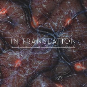 In Translation - Perception cover art
