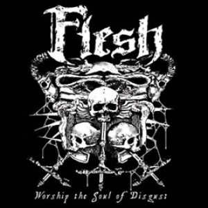 Flesh - Worship the Soul of Disgust cover art