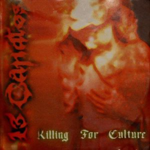 13 Candles - Killing for Culture cover art