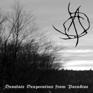 A Cloud in Circle - Desolate Desperation from Paradise cover art