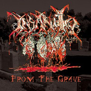 Insanity - From the Grave cover art