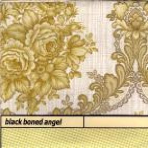 Black Boned Angel - Ashes cover art