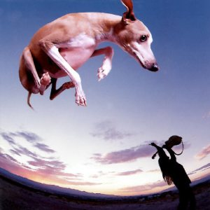 Paul Gilbert - Flying Dog cover art
