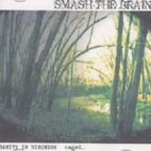 Smash The Brain - Sanity in Disunion + Caged cover art