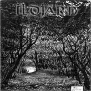Ildjarn - Forest Poetry cover art
