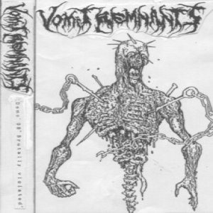 Vomit Remnants - Brutally Violated cover art