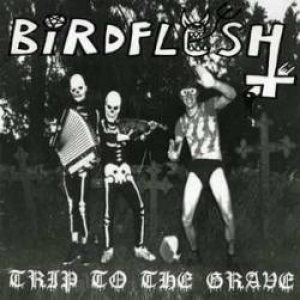 Birdflesh - Trip to the Grave cover art