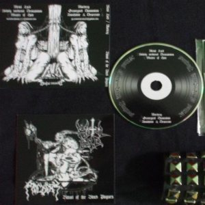 Metal Lord - Ritual of the Black Plagues cover art