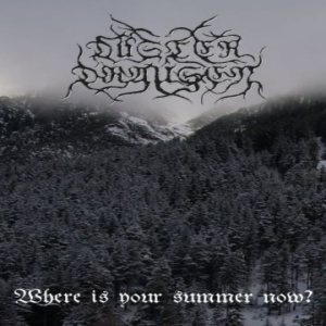 Düsterdraußen - Where Is Your Summer Now? cover art