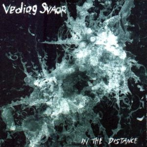 Vediog Svaor - In the Distance cover art