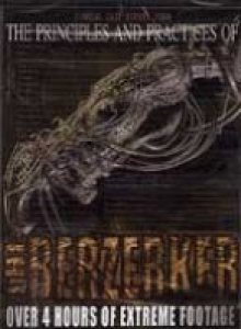 The Berzerker - Principles and Practices of the Berzerker cover art