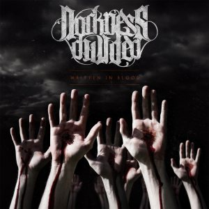 Darkness Divided - Written in Blood cover art