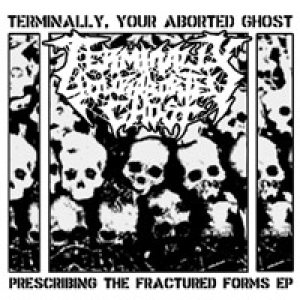 Terminally Your Aborted Ghost - Prescribing the Fractured Forms cover art