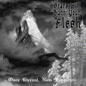 Stars Will Burn Your Flesh - Once Eternal, Now Forgotten cover art