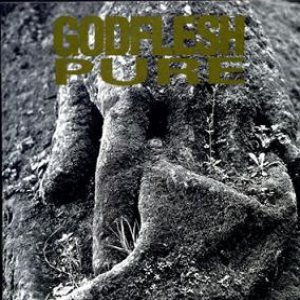 Godflesh - Pure cover art
