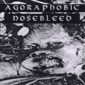 Agoraphobic Nosebleed - 30 Song Demo Cassette cover art