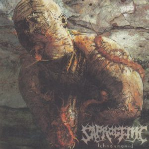 Saprogenic - Ichneumonid cover art