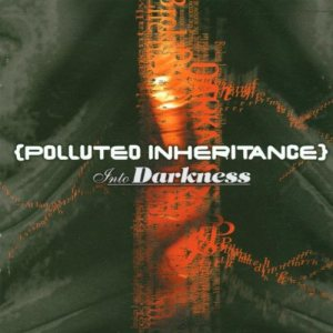 Polluted Inheritance - Into Darkness cover art