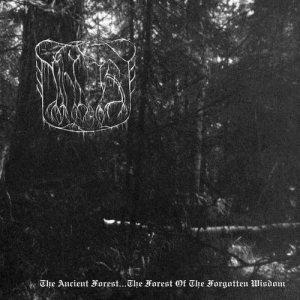 The True Nihilist - The Ancient Forest...The Forest of the Forgotten Wisdom