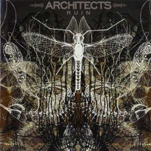Architects - Ruin cover art