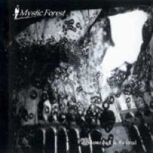 Mystic Forest - Welcome back in the forest cover art