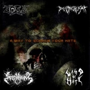 Land of Hate / Zora - 4 Way to Scream Your Hate cover art