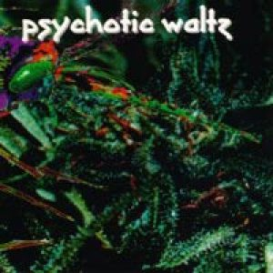 Psychotic Waltz - Mosquito cover art